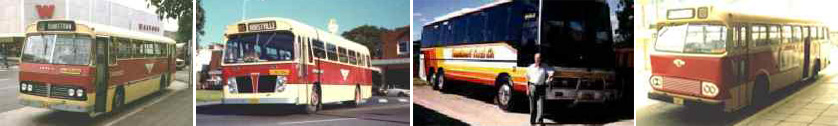 History of Punchbowl buses